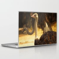 ostrich Laptop & iPad Skins featuring Ostrich by Unfocussed