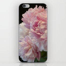 Pink Peony Passion iPhone Skin