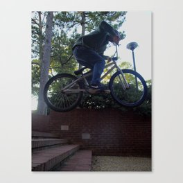Stairs Aren't for Walking Canvas Print