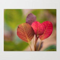 The Sugar Plum Tree Canvas Print