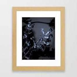 Frosty Buds Framed Art Print