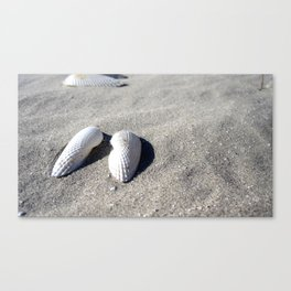 Angel Wings In Sand Canvas Print