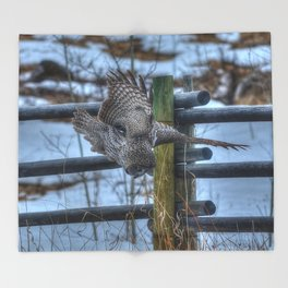 Dive, Dive, Dive! - Great Grey Owl Hunting Throw Blanket