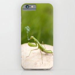 Smoking Praying Mantis iPhone Case