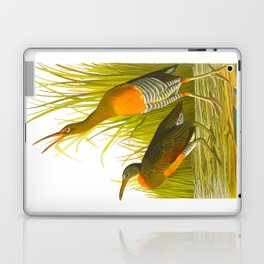 Salt Water Marsh Hen Laptop & iPad Skin