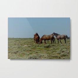 Wyoming Wild_Horses - I Metal Print