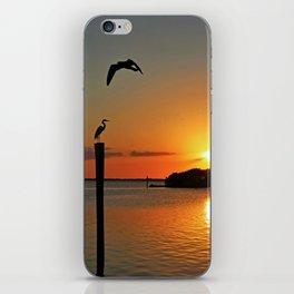 Coastline Chorus iPhone Skin