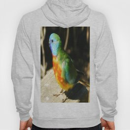 Australian Native Birds Hoody
