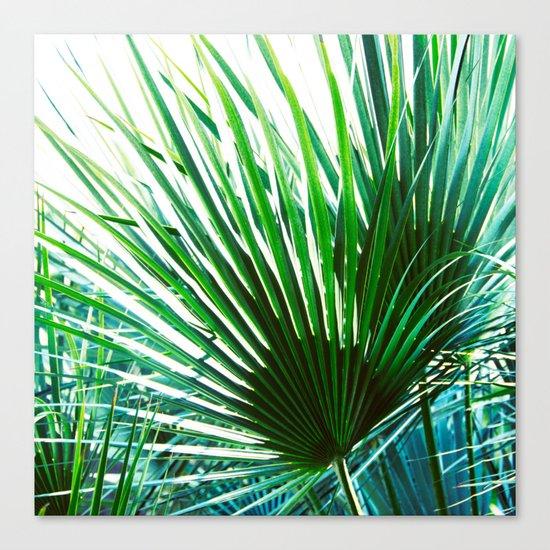 Bright Palm 4 Canvas Print