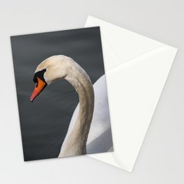Mute Swan in Winter Stationery Cards