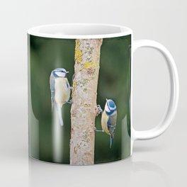 Blue Tit ( Cyanistes caeruleus) Coffee Mug