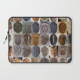 Trilobite Montage Laptop Sleeve