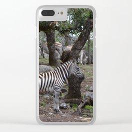 zeba nebas Clear iPhone Case