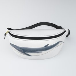 Bryde´s baby whale (Balaenoptera brydei) Fanny Pack