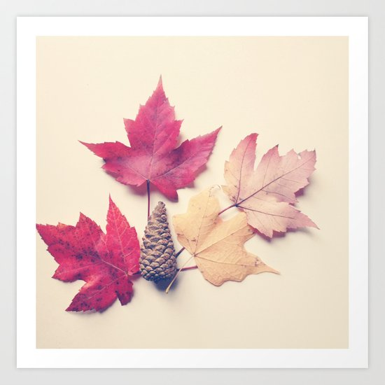 Red Maple Leaf Collection Art Print