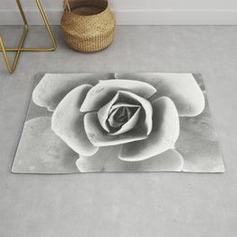 Succulent Photo | Black and White Rug