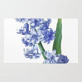 HIGHEST QUALITY botanical poster of Hyacinth Rug