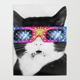 Laser Cat Poster