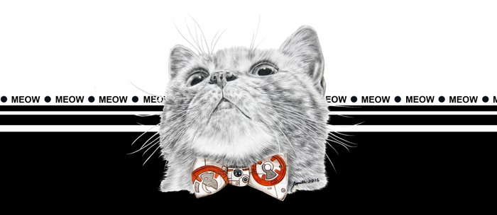 Starwars kitty Coffee Mug