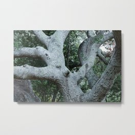 Forest King Metal Print