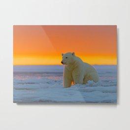 Sunset Polar Bear Metal Print