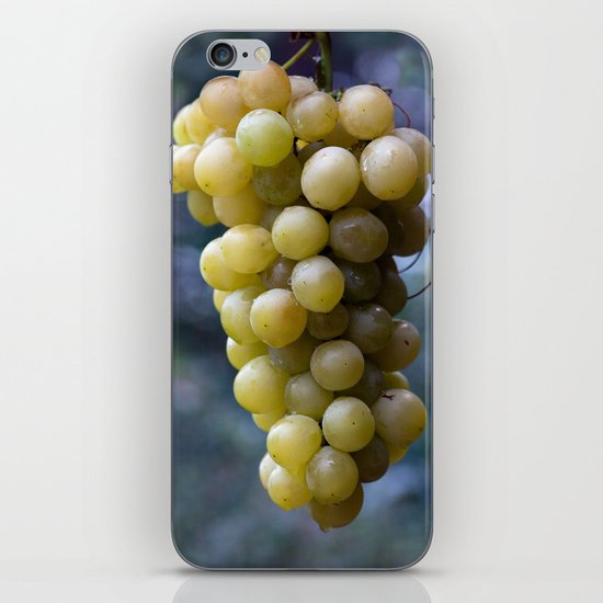 Harvest time ... 8508 iPhone & iPod Skin