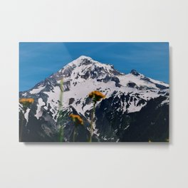 Mountain view suite part two Metal Print