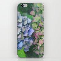 hydrangea iPhone & iPod Skins featuring hydrangea by EnglishRose23