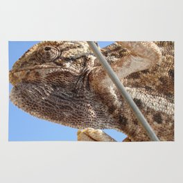 Close Up Of A Climbing Chameleon Rug