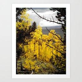 A Mountainside Fire of Gold Art Print