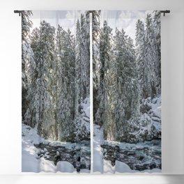 Pacific Northwest Winter River Adventure Blackout Curtain
