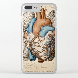 Vintage anatomy illustration Clear iPhone Case