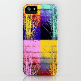 A Design for All Seasons iPhone Case