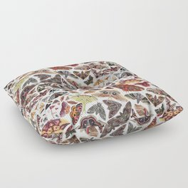 Moths of North America Pattern Floor Pillow
