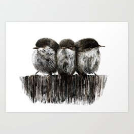 Three little birds. Art Print