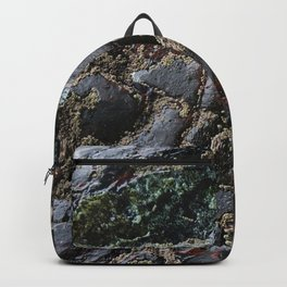 Ocean Weathered Natural Rock Texture with Barnacles Backpack