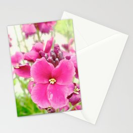 Chartwell Stationery Cards