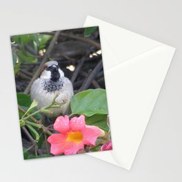 Sparrow in the Vine Stationery Cards