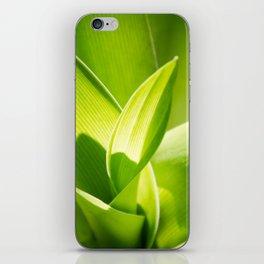 Twirl iPhone Skin