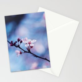 Yamazakura Floral Art - Cherry Blossoms Stationery Cards