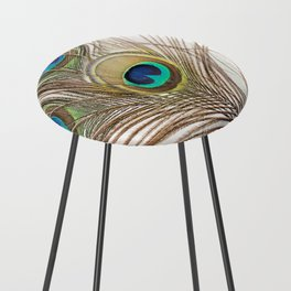 Exquisite Renewal Counter Stool
