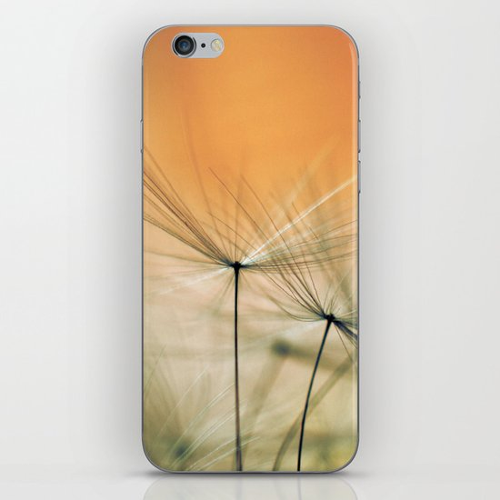 Apricot Chutes iPhone & iPod Skin