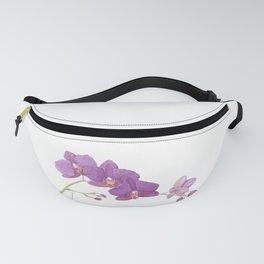 Flowering purple phalaenopsis orchid Fanny Pack