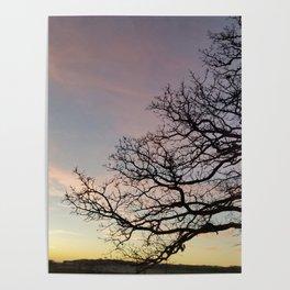 Subtle savanna sunset - Pheasant Branch Conservancy Poster