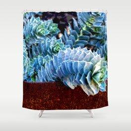 EUPHORBIA #4 Shower Curtain