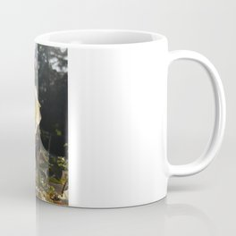 Rose Garden Sunshine Coffee Mug