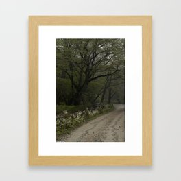 Mist Season Framed Art Print
