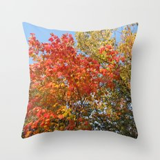 Autumn Leaves II Throw Pillow