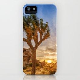Gorgeous Sunset at Joshua Tree National Park iPhone Case