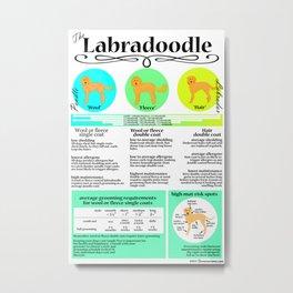 Labradoodle Coat & Grooming Infographic Metal Print